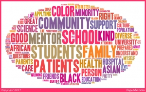 health care and good medicine require diversity and cultural competence
